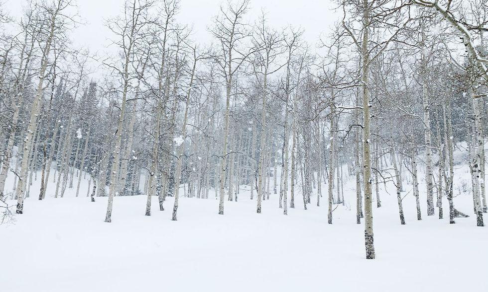 Skidområde utan liftar öppnar i Colorado - helt fokuserat på topptur