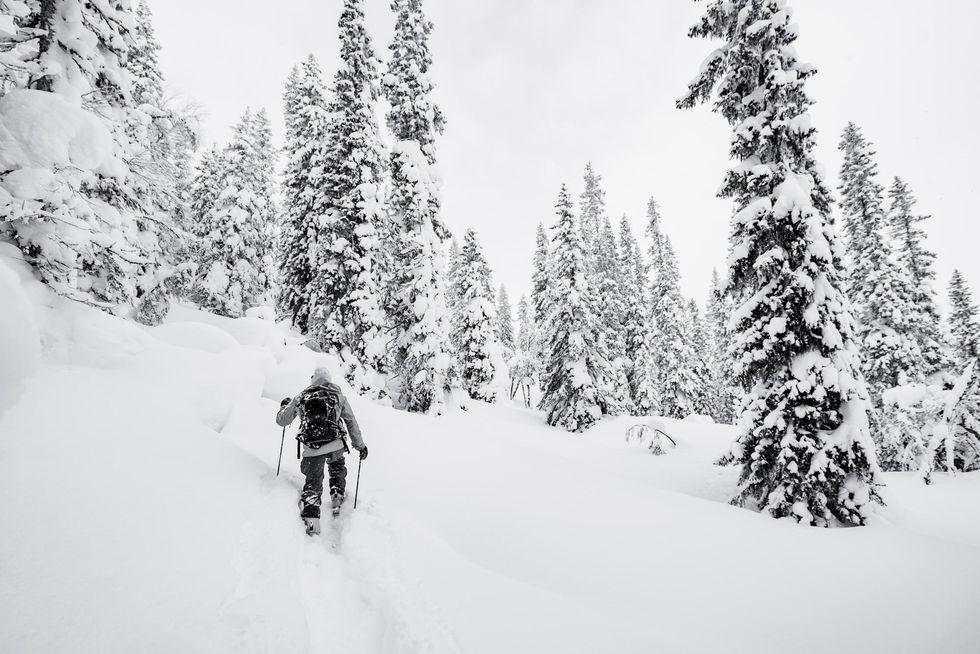 Den senaste trenden: minigolf för skidåkare