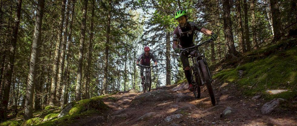 Ta liften och cykla i sommar - 10 bike parks i Sverige