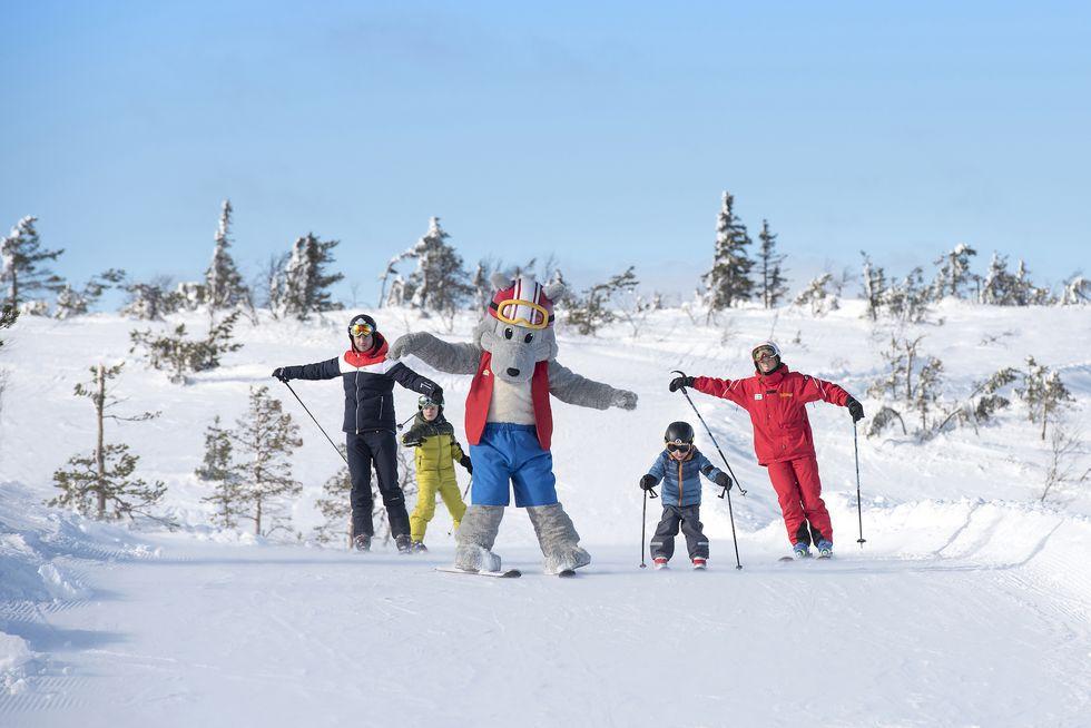 Stöten är årets skidanläggning 2019