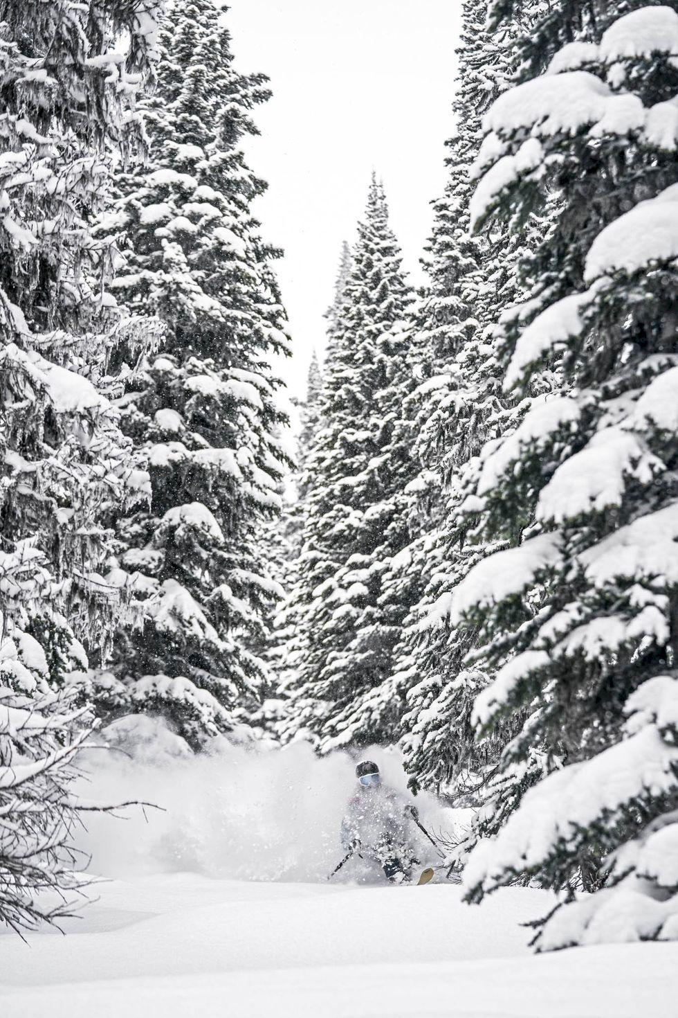 Kajsa & Malou - den nya tidens skidåkare