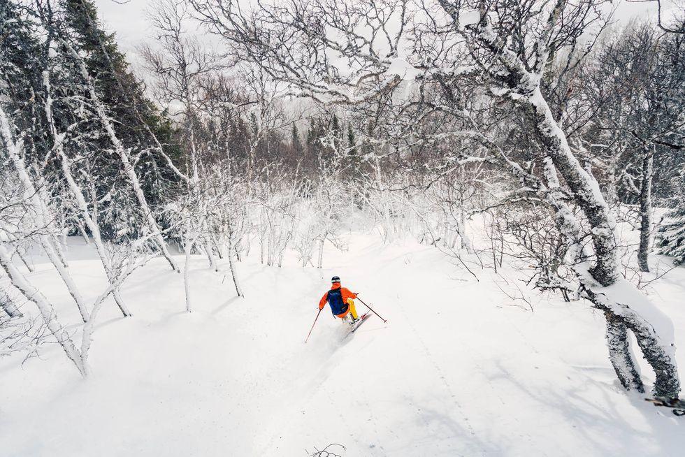 Skidtest 2019: Vinterns bästa freerideskidor