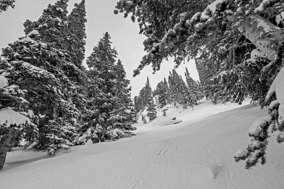 Världens bästa skidåkning: Alta