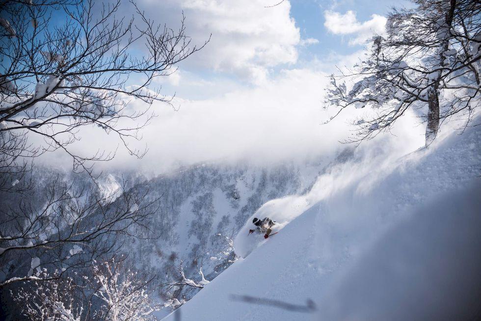 Jacob Wester - en halv livstid som skidproffs