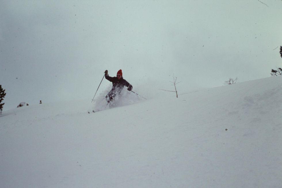 Skogstokig i Ischgl 1978