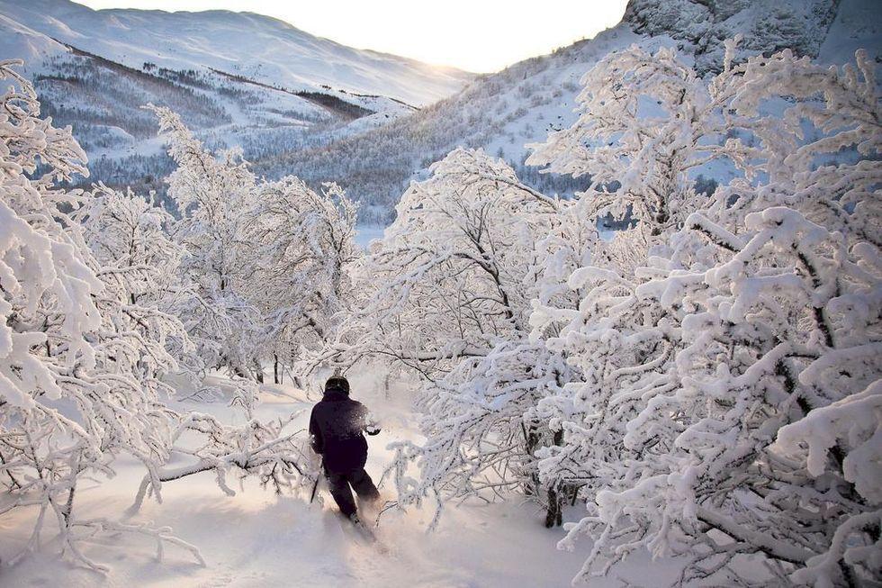 Resetipset: Norsk alpåkning