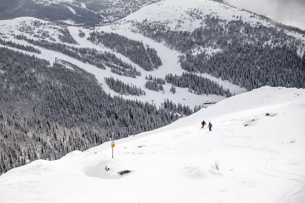 Skidtest: vinterns 5 bästa allmountainskidor