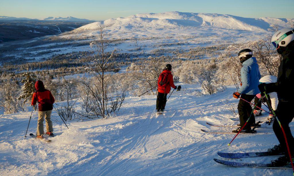 Slalomkäppar utbytta mot fjällbjörkar. Foto: InspireUs