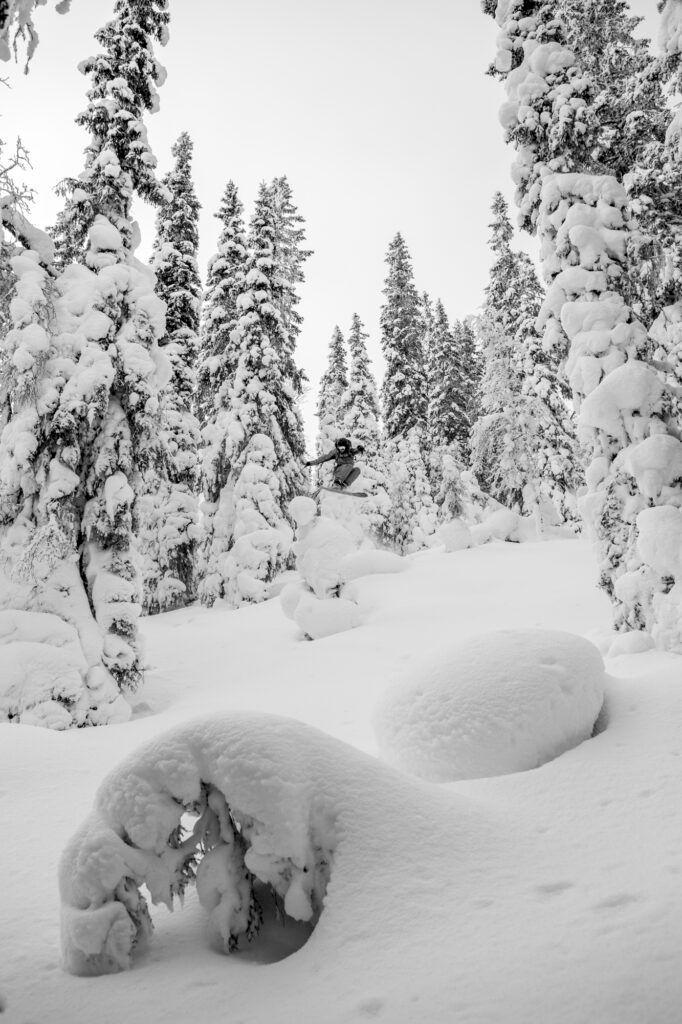 Stormåkning i Borgafjälls skogar. Foto: Johan Axelsson